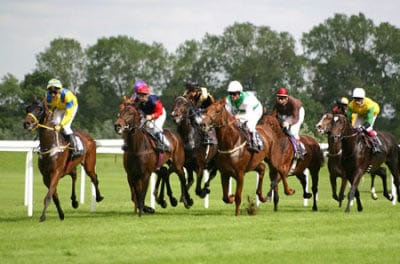 horse-racing-small